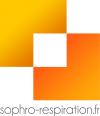 Logo 100 complet